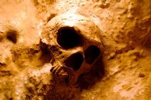 gib skull 2