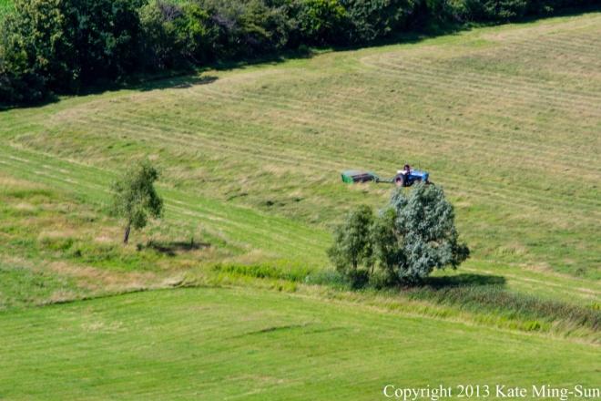 20130803 - harvesting hay