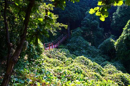red bridge Goobongsan